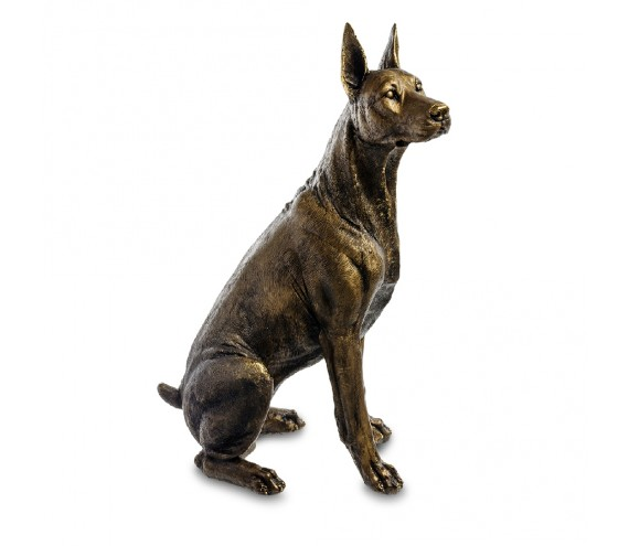 Собака Доберман сидит маленький