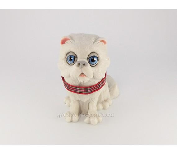 Кот, белый