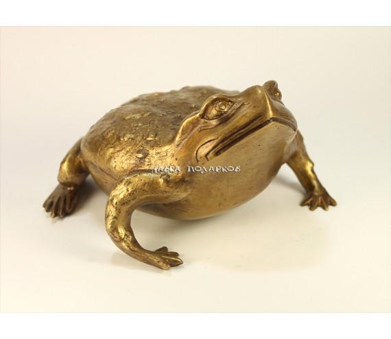 Японская лягушка